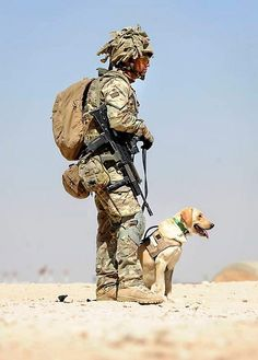 A British soldier seconded to the 1st Military Working Dog Regiment from the 1st Battalion The Duke of Lancaster's Regiment is pictured with Military Working Dog 'Dinah' in Afghanistan. Photograph By Cpl Mike O'Neill / © Crown copyright