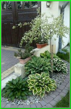 Front Yard Landscaping Ideas: Our easy flower Bed ... * Get more details by click the image. Diy Landscaping, Small Front Yard Landscaping, Garden Design, Front Yard Landscaping Design, Yard Design