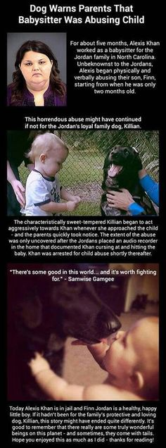 This is why I LOOOOVE animals! Poor Finn, thank you Kilian!! Rot in hell Alexis.