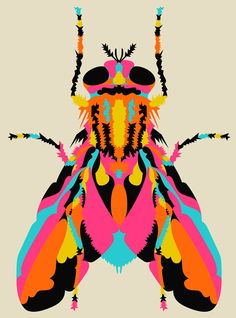 A fly never looked so cool!#Repin By:Pinterest++ for iPad#