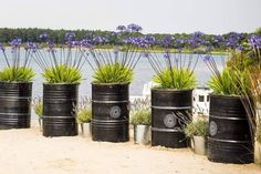 Tough planters made from oil barrels , Burn Barrel, Oil Barrel, Townhouse Garden, Barrel Planter, Terrace Garden, Diy Planters, Back Gardens, Backyard Landscaping, Garden Inspiration