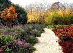 Path idea with plant borders