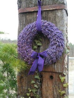 This video is a simple way to make a lavender wreath. I use Grosso lavender for this lavender wreath. Lavender Cottage, Lavender Blue, Lavender Fields, Lavender Flowers, Lavander, French Lavender, Lavender Crafts, Growing Lavender, Purple Home
