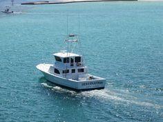 Deep sea fishing charter in Destin Destin Fishing, Fishing Boats, Construction Drawings, Cool Boats, Charter Boat, Fishing Charters, Deep Sea Fishing, Boat Rental, Image Photography
