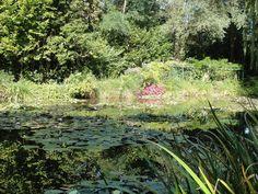 Jardim das Águas, na residência do Monet, em Giverny.