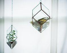 Image of Iridis Prism Terrarium - medium