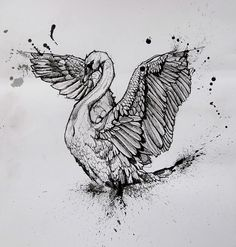 Luxury black-ink open-winged swan with watercolor splashes tattoo design - Tattooimages. Bird Drawings, Realistic Drawings, Animal Drawings, Tattoo Drawings, Animal Sketches, Art Sketches, Schwan Tattoo, Black Swan Tattoo, Swan Drawing