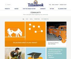 Social media aggregation page - Tillamook