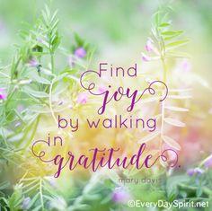 Find joy. #joy #gratitude For the app of wallpapers ~ www.everydayspirit.net xo
