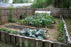 Garden Pallet Fence.