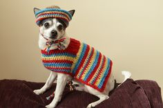 7 #crochet sombrero patterns for Cinco de Mayo - If you've got a small dog that you want to dress up then this crochet sombrero and poncho pattern set is a fun costume. The pattern is for sale on Ravelry by Stephany's Stitches.