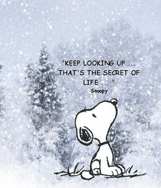 eethoek        Keep looking up - Snoopy