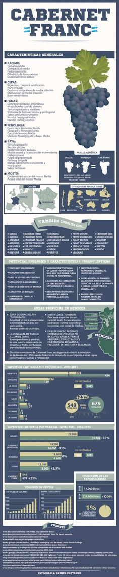 Cabernet Franc, un pantallazo sobre la variedad #infografía