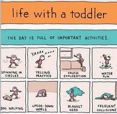 Grant Snider, the creator of Incidental Comics have created a great comic strips- Life With a Toddler which is brutally honest and absolutely hilarious. Parenting Humor, Kids And Parenting, Parenting Plan, Parenting Classes, Parenting Styles, Gentle Parenting, Lunch Boxe, Toddler Humor, Toddler Stuff