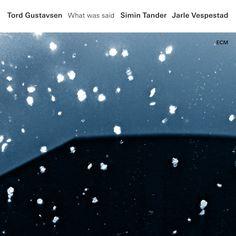 WHAT WAS SAID TORD GUSTAVSEN, SIMIN TANDER, JARLE VESPESTAD