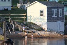 """Kids Swimming, Stonington, Maine"" (© Steven A. Seidman)"