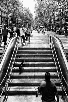 a passejar per les rambles · Barcelona, 30 de juny de 2012