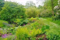 Beautiful open gardens to visit in the UK | Public gardens / RHS Gardening