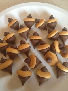 For our Between Earth and Sky talk about seeds ... acorns I made with mini vanilla wafers and choc chips and kisses chips held on with cookie icing that hardens.