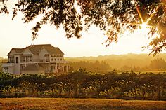 Tara Vineyard & Winery in Athens, Texas