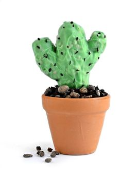 vegan gluten-free Cactus Cupcakes celebrate water conservation in California, from Fork and Beans!