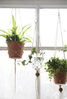 Get knotty with these macrame hanging planters. Indoor Garden, Garden Plants, Indoor Plants, Home And Garden, Macrame Hanging Planter, Hanging Planters, Cactus Plante, Growing Greens, Plants Are Friends