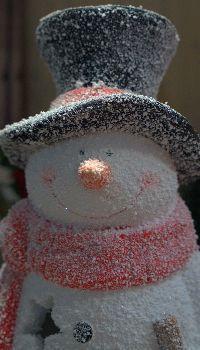 Snowman Christmas deco Snowman Quotes, Snowman Images, Snowmen Pictures, Snowman Emoji, Snowman Hat, Christmas Deco, Christmas Snowman, Christmas Cards, Snowman Wallpaper