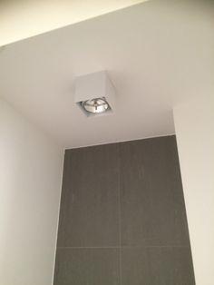 Plafondspot toilet