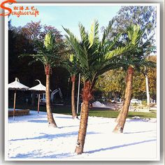 http://www.alibaba.com/product-detail/ST-CC35-artificial-coconuts-palm-tree_60558240685.html