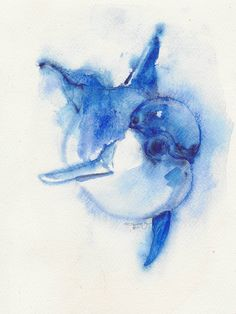 Dolphin, original, watercolor, animal art, OOAK. $25.00, via Etsy.