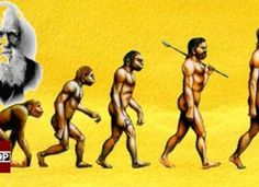 Magic and Mystery of Evolution – What Charles Darwin Never Knew