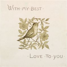 """Today I'm sharing this Vintage Bird in Flower Branch Valentine Graphic! In this sepia drawing, a little chickadee stands proudly among a wildflower branch that forms a square pattern oval leaves.. The flowers have 6 petals and thin The card reads, """"With My Best, Love To You."""" So nice to use in your Sweetheart Craft...Read More »"""