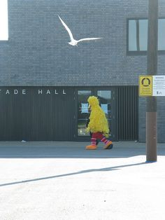 I will always be on your side, Big Bird.  Don't let Romney scare you.