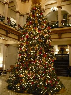 24-foot tall Christmas tree at Capital Hotel in Little Rock, Arkansas.  Gorgeous tree in an opulent hotel.