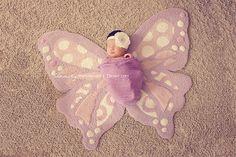 baby girl newborn photography. butterfly.