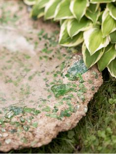 Concrete Bird Baths | Garden Crafts & Garden Decor