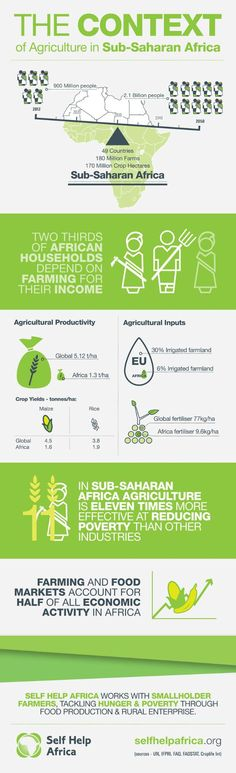 An infographic from Self Help Africa which explains the importance of agriculture in African development. #infographic #africa #farming #development