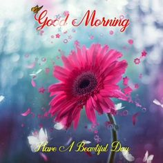Inspiring Good Morning Quotes For A Wonderful Day Good Morning Wishes Gif, Good Morning Gift, Good Morning Happy Sunday, Good Morning Flowers, Good Morning Greetings, Good Morning Sunshine, Beautiful Morning Messages, Inspirational Good Morning Messages, Good Morning Beautiful Images