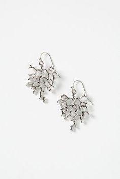 Silvered Kelp Drops
