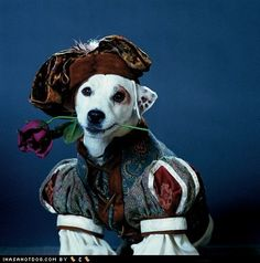 LOVED Wishbone when I was growing up. <3