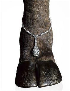 New Jewerly Advertising Campaign Harry Winston Ideas Pearl Jewelry, Jewelry Box, Jewelery, Fine Jewelry, Photo Jewelry, Fashion Jewelry, Jewelry Editorial, Animal Print Fashion, Harry Winston