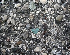 Blue Heart Rock on the streets in Paris, France.   As I bent down to lace my shoes, I saw this tiny little heart amongst the million stones in the street.
