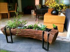 Tree Stump For Garden Art. you can use tree stumps in your garden as planters and they will give you a special charm that everyone will be admired. Log Planter, Wooden Planters, Planter Ideas, Into The Woods, Log Furniture, Diy Furniture Plans, Furniture Assembly, Cheap Furniture, Luxury Furniture