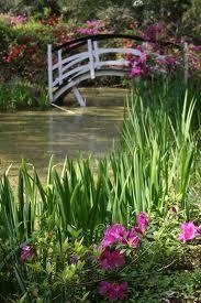 Magnolia Plantation Gardens, Charleston, SC