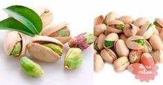 Cultive pistaches em casa a partir do pacotinho que compra no supermercado!