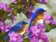 Bluebirds & Spring Blossoms - love four seasons, flowers, animals, spring, pink, nature, bluebirds, birds, paintings