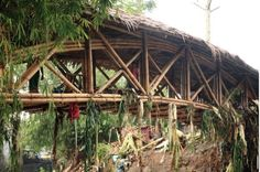 Andrea Fitrianto and locals build Bamboo Bridge in Philipines « Inhabitat – Green Design, Innovation, Architecture, Green Building Bamboo Architecture, Vernacular Architecture, Davao, Bamboo Building, Green Building, Philippine Holidays, Bamboo Construction, Bamboo House, Bamboo Plants