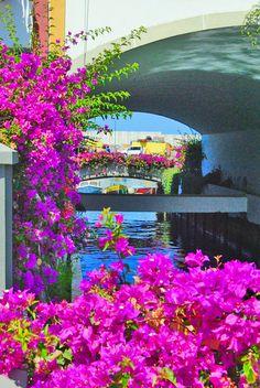 Puerto de #Mogán, isla de #GranCanaria #IslasCanarias