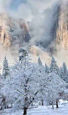 See more Winter - Yosemite National Park, California Christmas Poster, Cozy Christmas, Winter Pictures, Nature Pictures, Christmas Backdrops For Photography, Mountain Waterfall, I Love Winter, Winter Nail Art, Photos Voyages