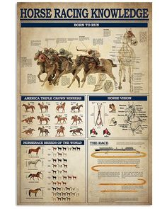 Survival Tips, Survival Skills, Knowledge Is Power, Useful Life Hacks, Comic, Horse Racing, Things To Know, Life Skills, Equestrian